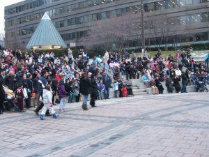 c33-crowd6.jpg