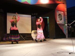 c81-charshanbesoori2007folkdance2(143).jpg
